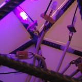 A closer look inside Lichtspeicher